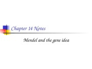 APchapter14notes
