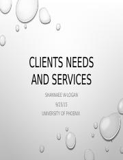 Clients Needs and Services