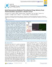 journal article.pdf