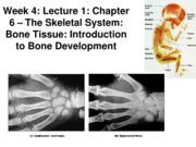 Z331 Fall 2010 Week 4 Lecture 1 Introduction Posted