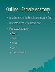 L5 Female Anatomy.ppt
