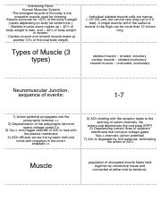 StudyBlue Flashcard Printing of muscle 1.pdf