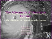 Businesses Affected By Katrina
