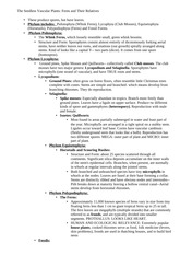 Seedless vascular plants notes