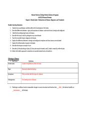 HD Chapter 1 Study Guide_kimtrausch.docx