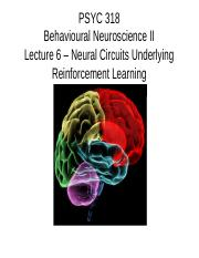 Lecture 6 - Neural Circuits Underlying Reinforcement Learning