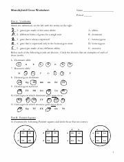 Ilan_Lederman_-_A)_Monohybrid_Cross_Worksheet-1.pdf ...