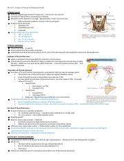 Chp 52 Thyroid Disorders.docx