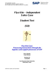 Flya Kite - Independent Sales Case - Student Text