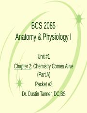 BCS 2085 Chapters 2-4.ppt