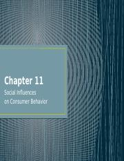 Chapter 11_Social Influence_WEB.pptx