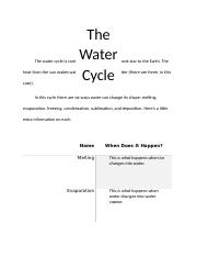 The Water Cycle.docx
