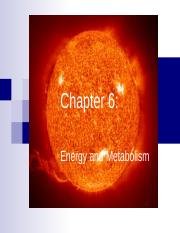 Chapter 6 - Energy and Enzymes