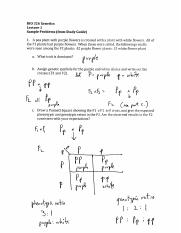 Lecture 1 prob ans