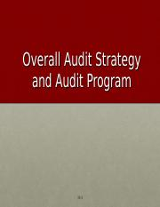 Audit Strategy and Program.ppt