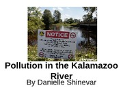 COM1000 Persuasive Presentation on Pollution in the Kalamazoo River