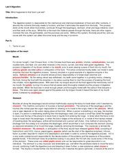 lab1 bio156 Study bio 156 lab exam 1 flashcards at proprofs - bio 156.