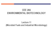 11 industrial microbiology