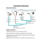 Chelicerates & Myriapods