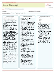 Basic Concept Active Learning Template 2013