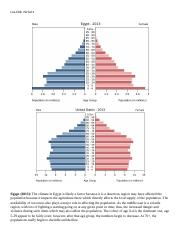 Age Structure Pyramid