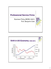 (9) Professional Service Firms