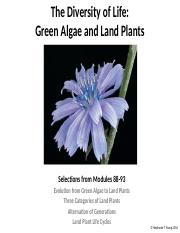 Lecture 7 - Diversity of Life - Green Algae and Land Plants EC-2.pptx