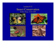17. Insect Conservation