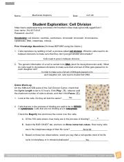 Copy_of_CELL_DIVISION_GIZMO_ASSIGNMENT - CELL DIVISION ...