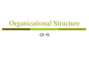 4+Org+Structures