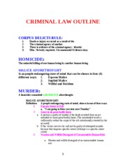 Outline Crim Law