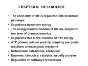 Lecture Slides- Metabolism Ch8