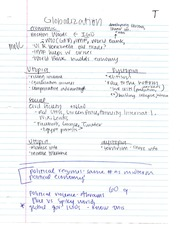 PSC 203 Globalization Notes