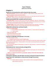 Nutrition News: Nutrition Quizlet Exam 2