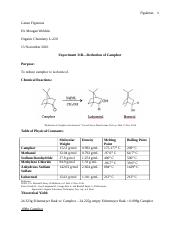 Experiment 31B--Reduction of Camphor.docx