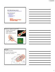 05_Internalstructures.pdf