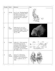 Maps of Asteroids