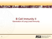 Lecture 9 - B cell Immunity IIb