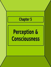 Perception & Consciousness (1)