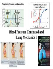 human phys Lecture 9 BP and Lung Mechanics I 2017 WEB.ppt