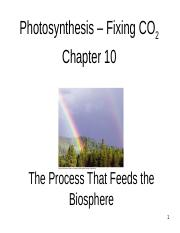 9._photosynthesis_Part_1_F.pptx