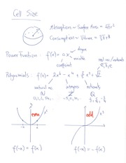 MATH 180 Power Function and Polynomials Notes