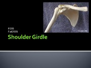 Shoulder Girdle lecture Slides