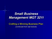 Small+Business+Management+slides+(lecture+19)