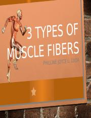 3 Types of Muscle Fibers - Factors affecting Muscle Strength and Endurance.pptx
