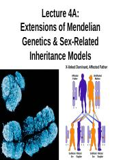 Lecture_4A_Extension_of_mendelian_Genetics_and sex-linked inheritance