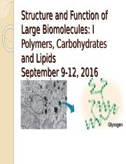 Structures_Biomacromolecules_I_fall_2016.ppt