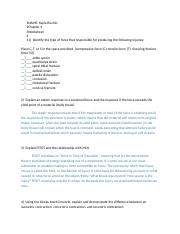 Injuries Class Worksheet 4.docx