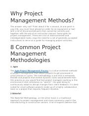 Project management.docx