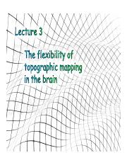 Lecture_3_Spatiotopy_&_Transformations